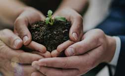 Connecting to Roots – CSR Initiatives