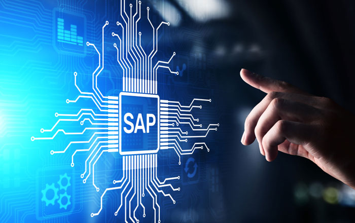 Aarav's SAP Services for Business Efficiency